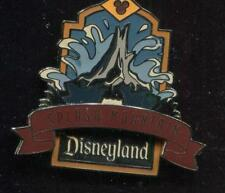 DLR Splash Mountain the Original Disney Pin 3139