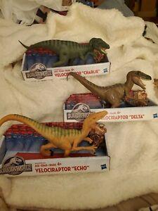 3 Jurassic World Dinos Dinosaurs Velociraptor Echo Delta Charlie NEW Hasbro