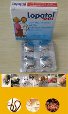 4 Tablets Panacur Canine Dewormer Oral Wormer Roundworm Tapeworm Worms Dogs >7kg