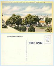 Residential Street Scene in Ocean City New Jersey c1940s Home Postcard
