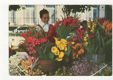 Madeira Funchal Venda de Floros 1971 Postcard 381b