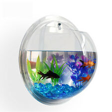 NEW! WALL MOUNTED FISH TANK - BETTA BUBBLE AQUARIUM - WITH PLANT, ROCKS AND MORE