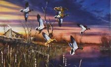 """Jim Hansel """"Final Approach"""" Duck  Print  12"""" x 7.5"""""""
