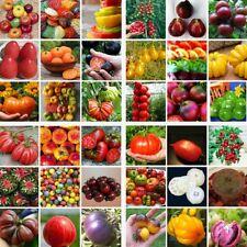 200pcs Gemischt Tomatensamen Hausgarten Gemüse Obst Samen Saatgut