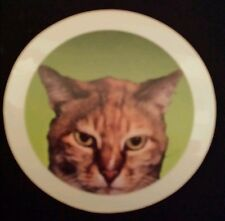 Lovely Cat  Window Cling Sticker
