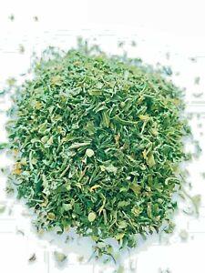 Hanftee BIO 1000g Kräutertee Tee in Lebensmitteleimer