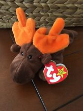 TY 1993 Chocolate The Moose Beanie Baby