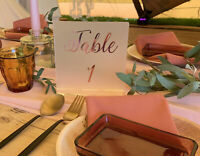 Acrylic table numbers, table numbers, wedding ideas