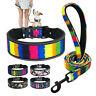 2''Wide Adjustable Large Dog Collar and Lead Set Reflective for Boxer Labrador