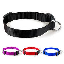 1 Pc Pet Dog New 2016 Trendy Charming 4 Sizes S-XL Nylon Solid Collar