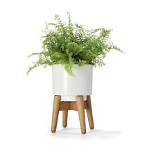 Mini Plant Pot With Stand White And Wood