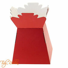 Dark Red Matte Living Vase Bouquet Flower Box Gift Sweet Florist Presentation