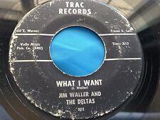 Hear RARO CA garaje 45: Jim WALLER AND THE Deltas ~ What I WANT ~ Trac 502