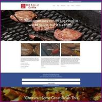 BARBECUE Website Business For Sale | $2,282.80 A SALE | FREE DOMAIN + HOSTING