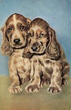 Postcard Cocker Spaniel Puppies