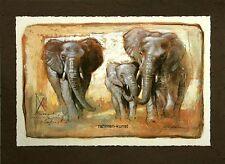 Joadoor: Tenderness Elefanten Afrika Fertig-Bild 50x70 Wandbild