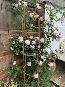 Small Round Metal Obelisk 1.25m Rustic Climbing Plant Support Rusty Garden Frame
