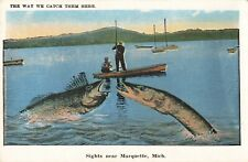 Postcard The Way We Catch Them Here Marquette Michigan