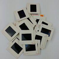 31 Amateur Kodachrome Kodak Slides 1979 Cowboy Festival Horse Riding - Lot #7