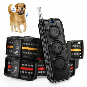 Electric Rechargeable Dog Training Collar Waterproof Remote Control For 1/2 Dogs