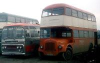 castlepoint- s&m coaches arn786c x fcu829 in yard 6x4 Quality Bus Photo