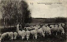 CPA  Types et Scenes champetres - Gardeuse de moutons  (384746)