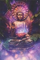 BUDDHA - TRANQUIL POSTER 24x36 - 811