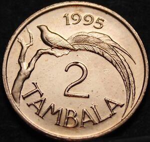 Malawi 2 Tambala, 1995 Uncirculated~Paradise Whydah Bird~Only Year Ever~Free Shi