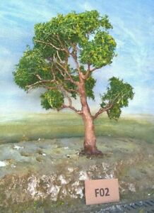 AUSTRALIAN MODEL GUM TREES  HO  OO  Lot F02