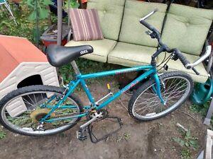 Vintage Specialized Hard Rock Mountain Bike - Seafoam/Coral