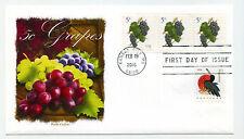 5038  5c Grapes, coil, Panda Cachets, FDC