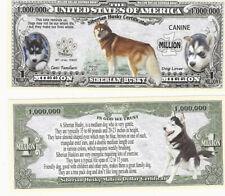 Dollar Siberian Husky Dog Hund 1 Million Certificate