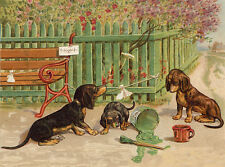 DACHSHUND CHARMING DOG GREETINGS NOTE CARD CUTE DOGS PLAY WITH GREEN PAINT