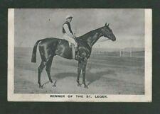 Vintage 1913 Postcard, Winner of The St Leger, Horse Racing