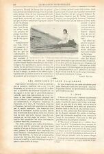 Poulpe Pieuvre Géant de la Mer Côte USA/Secours Asphyxies GRAVURE OLD PRINT 1899