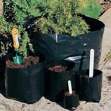 50 x 1-litre Polypots: Polythene plant pots, economical, flexible, reusable