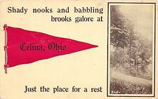 """Get A Rest"" in Celina Ohio~Shady Nooks & Babbling Brooks Galore~1912 Pennant PC"