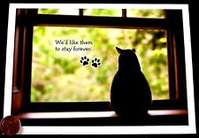 Adorable Cat Kitten at Window Paw Prints Pet Sympathy Greeting Card - NEW