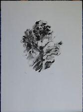GIUSEPPE AJMONE litografia Mazzo di Fiori 54x40 firmata numerata La Spirale