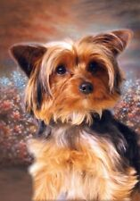 Yorkshire Terrier A6 Blank Card No P6 By Starprint