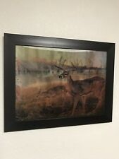 5D Photos Deer, New Flipping Technology 3 pictures In 1 Frame, 14*18 Inches