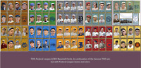 2020 LJACards Federal League T205 1911 Team Sets Trading Cards ACEO