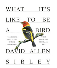 What It's Like to Be a Bird by David Allen Sibley (2020, Hardcover)