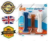 Nylabone Puppy Starter Kit Pack of 3 Dental Dog Chew Bones Teething Gentle UK