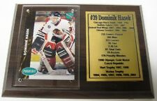 Chicago Black Hawks Dominik Hasek Hockey Card Plaque