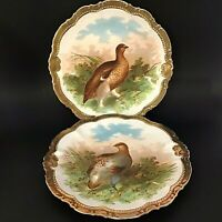 "P. M. BAVARIA GAME BIRD PLATES. SET OF 2. THICK GOLD RIMS 9 3/4"" GREEN PASTORAL"
