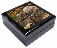 Mother and Baby Hedgehog Keepsake/Jewellery Box Christmas Gift, AHE-5JB