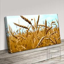 Tempo di raccolto campi di grano Tela Contemporaneo Stampa l'aggiornamento a 120x56cm
