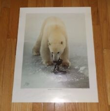 1984 Jay Stock Photograph Poster Print Polar Bear Camera Canada Signed 23 x 18
