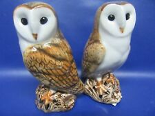 Barn Owl Salt and Pepper Pots - Barn Owl Cruet - Gift Boxed - New